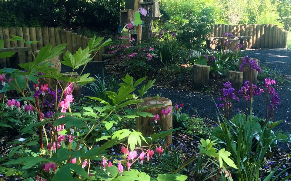 Woodland Garden | Hanging Heaton